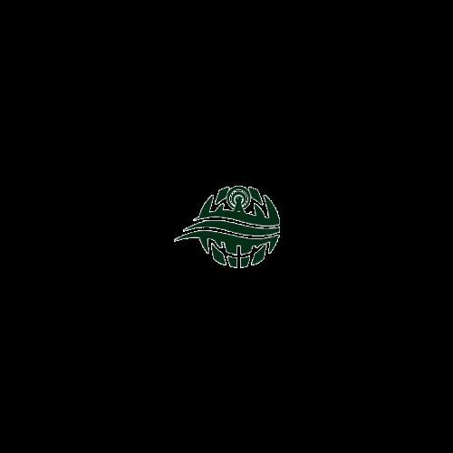 IOU TELECOMS